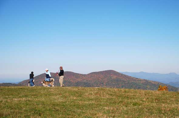 Enjoying Life - Max Patch, NC