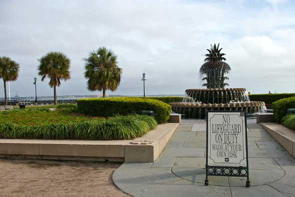 palmettos.fountain_mmtn